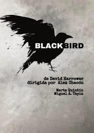 Cartel de Blackbird