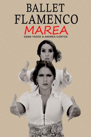 Cartel de Sueños flamencos
